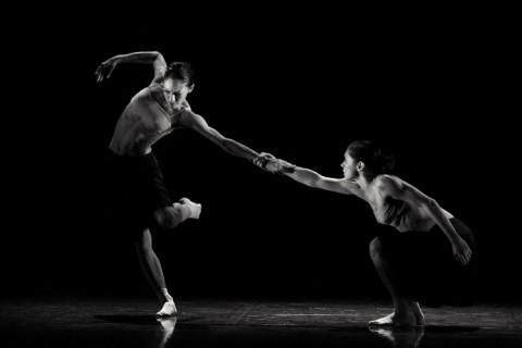 Dancing Partners Spellbound