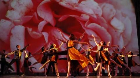 Divas Yada Dance Company FotoDarrin Zammit Lupi