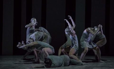 Pa Ethos Spellbound Contemporary Ballet - ph.Gianfortuna