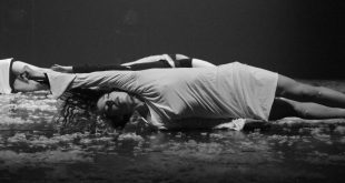 """Love Poems"" - Swans - Foto Nicola Stasi"